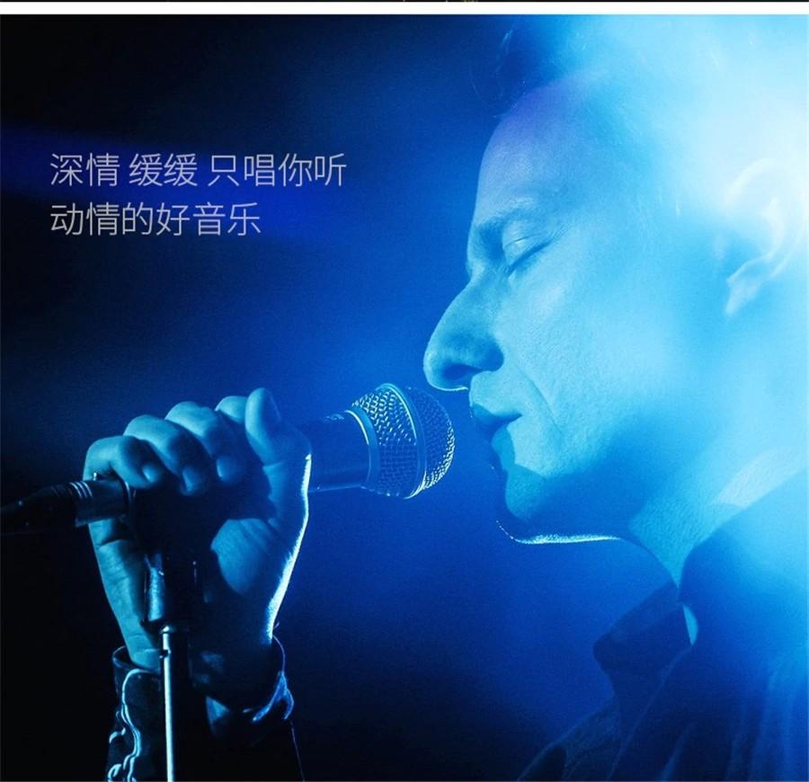 Remax Rmk K01 Mini Microphone (5)