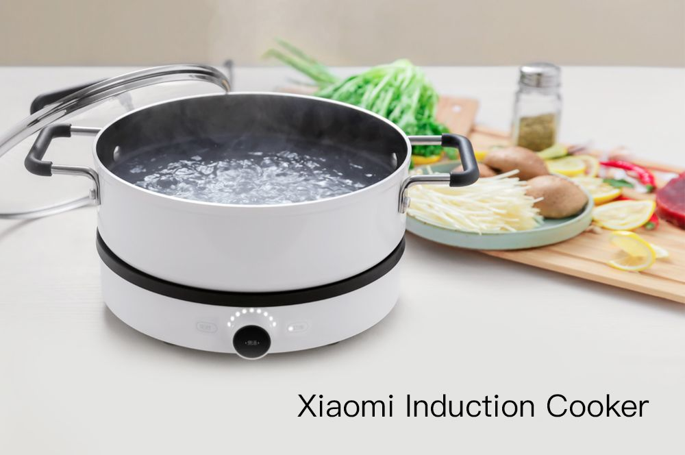 Xiaomi Mijia Induction Cooker (8)