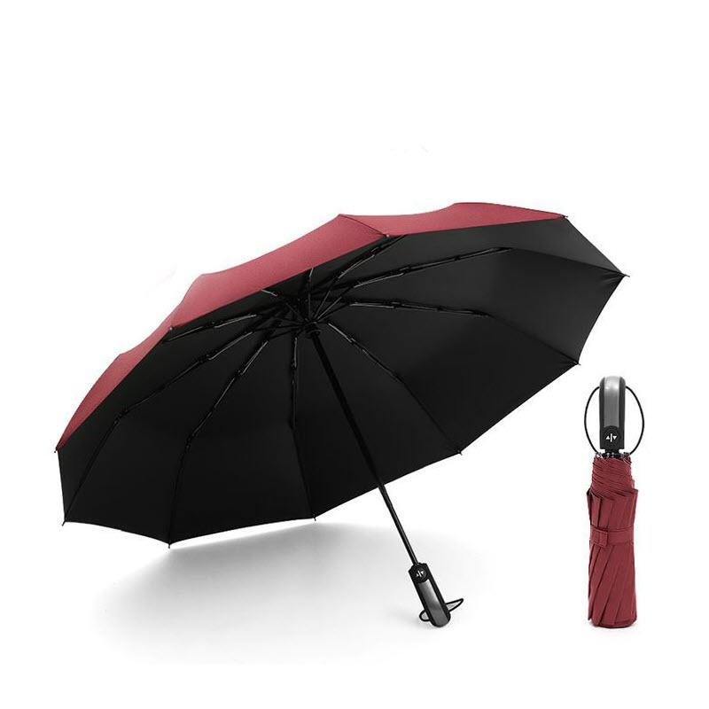 Auto Open Close Windproof Umbrella (8)