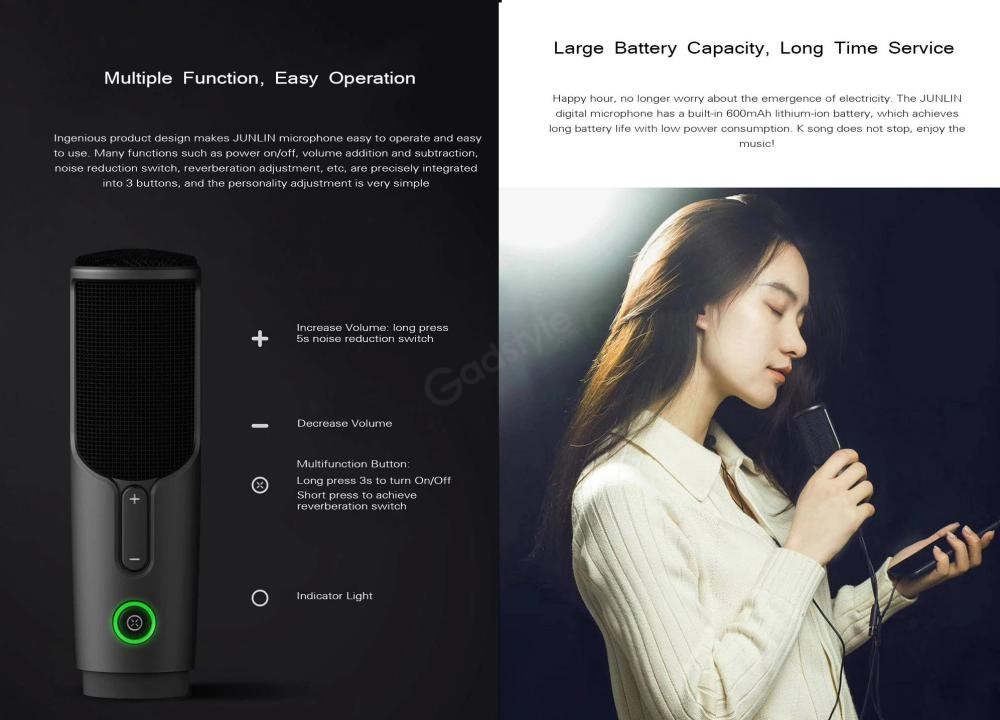 Xiaomi Junlin Hd Wired Mixer Digital Microphone Noise Reduction (4)