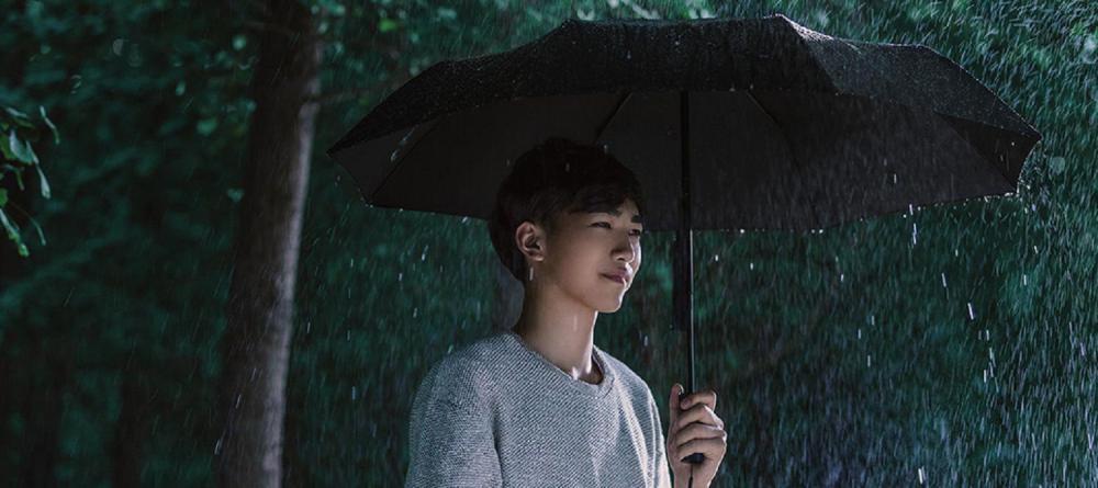 Xiaomi Life Home Automatic Umbrella (2)