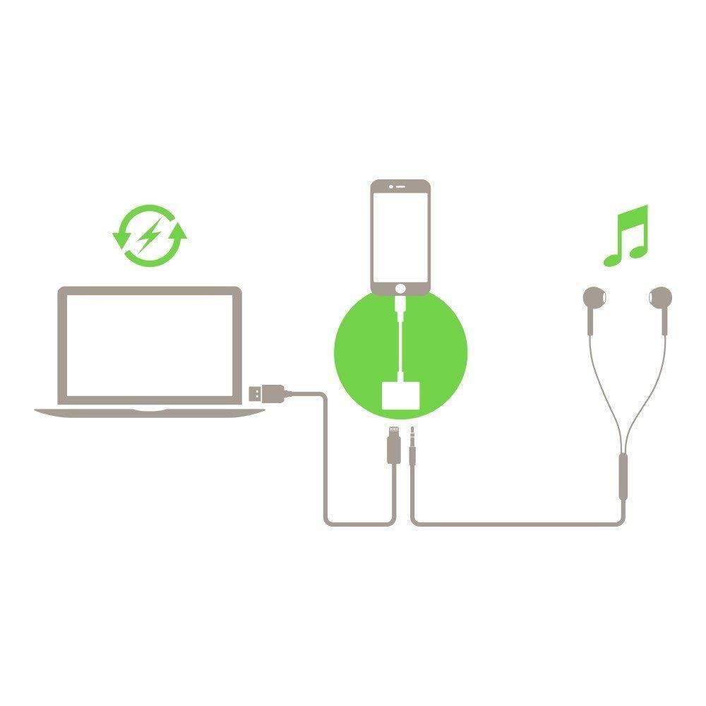 Belkin 3 5 Mm Audio Charge Rockstar Converter (5)